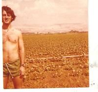 cotton fields at Hagoshrim s