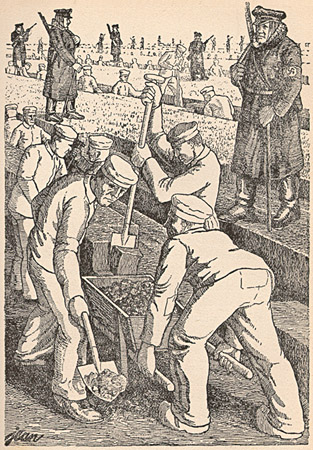 peat bog soldiers image